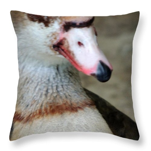 Goose Throw Pillow featuring the photograph I Didn't Do It by Munir Alawi