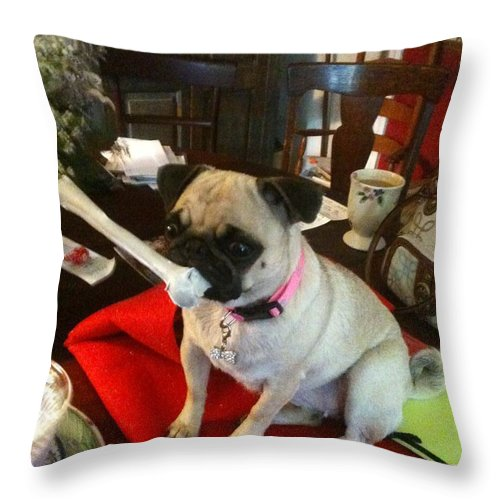 Pugs Throw Pillow featuring the photograph I Found A Bone by Elisbeth Caswell
