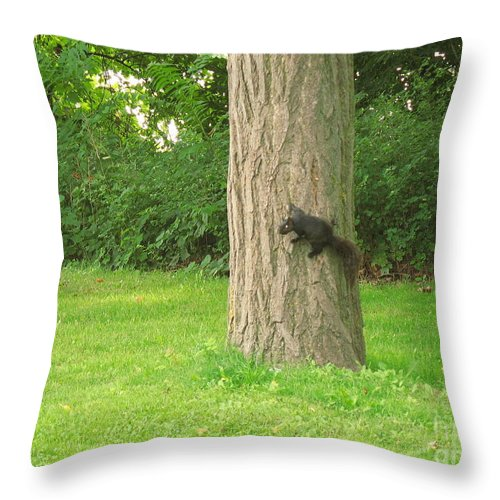 Small Animals Throw Pillow featuring the photograph I Got It by Jeffery L Bowers