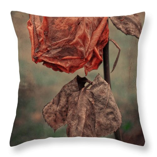 Vancouver Throw Pillow featuring the photograph I Last Saw Her by The Artist Project