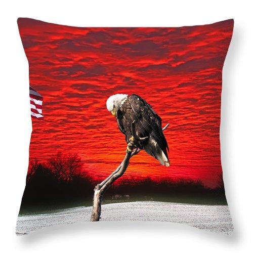 Pledge Allegiance Throw Pillow featuring the photograph I Pledge Allegiance by Randall Branham