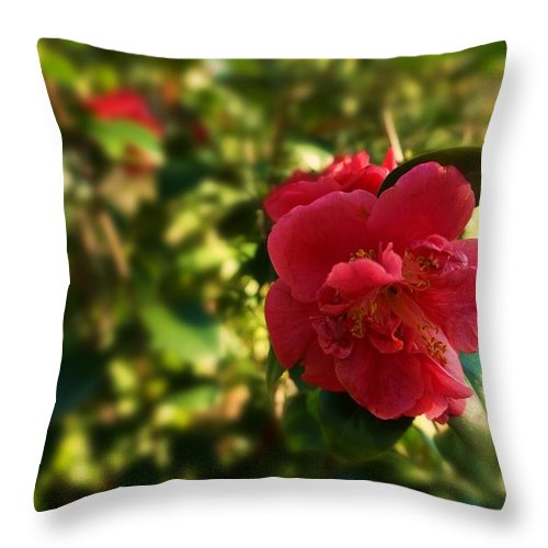 Flower Throw Pillow featuring the photograph I Stand Alone by Valery Bonbon