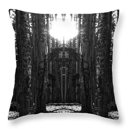 Oregon Throw Pillow featuring the photograph I Think We Are Lost by Nathan Anglin