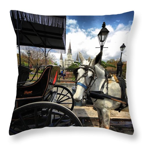 Horses Throw Pillow featuring the photograph I Told Em Cart Before by Robert McCubbin