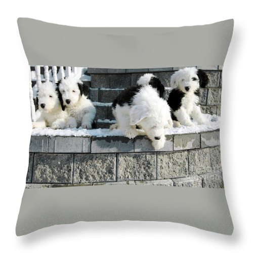 Old Throw Pillow featuring the photograph I Want To Jump by Kathleen Struckle