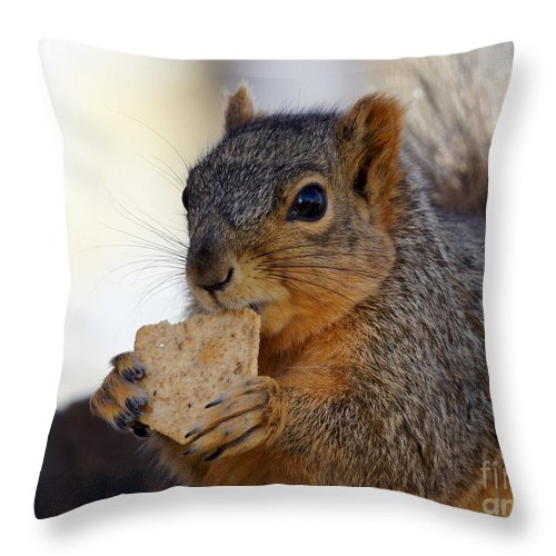 Squirrel Throw Pillow featuring the photograph I Would Like A Wheat Thin...please by Lori Tordsen