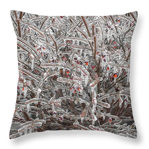 Ice Throw Pillow featuring the photograph Ice Abstract 1 by Barbara McMahon
