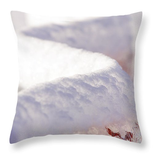 Ice Throw Pillow featuring the photograph Ice And Snow-5515 by Steve Somerville
