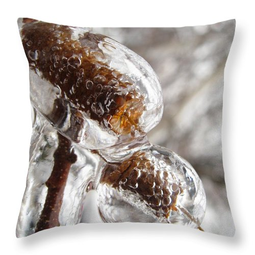 Ice Throw Pillow featuring the photograph Ice Cocoons I by David Mayeau
