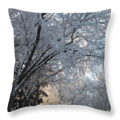 Ice Storm Throw Pillow featuring the photograph Ice On The 6th by Jacqueline Russell