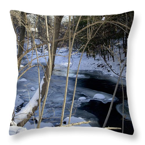 Creek Throw Pillow featuring the photograph Ice On The Creek by Cheryl Gayser
