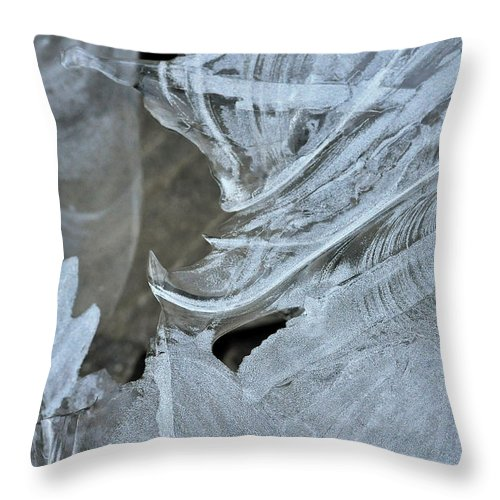 Ice Throw Pillow featuring the photograph Ice Curves by Glenn Gordon