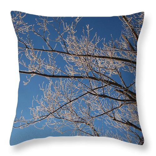 Branches Throw Pillow featuring the photograph Ice Storm Branches by Michelle Miron-Rebbe
