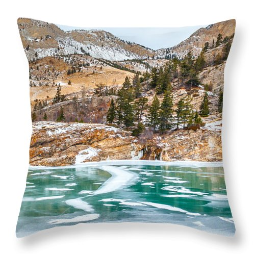 Ice Throw Pillow featuring the photograph Iced Over by Fran Riley