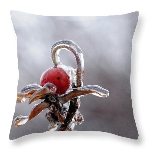 Ice Throw Pillow featuring the photograph Iced Rose Hips by Terri Winkler