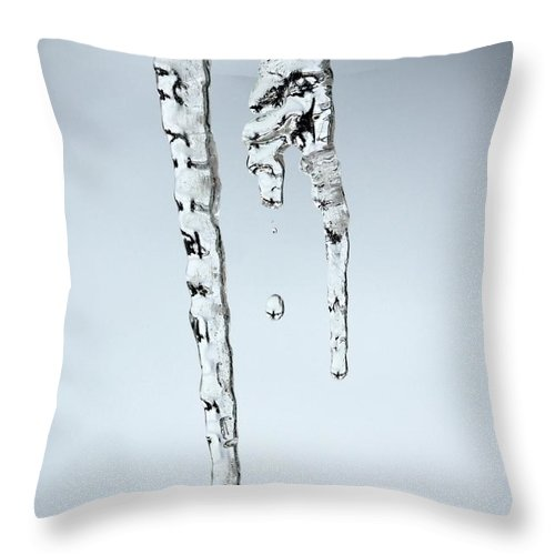 Icicle Throw Pillow featuring the photograph Icicle by Sharon Johnston