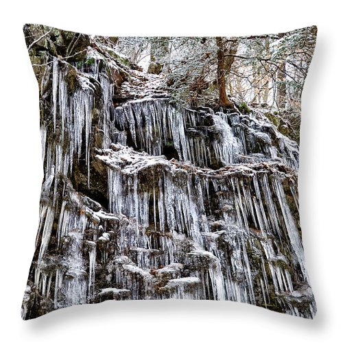 Icicles On Forbidden Drive Throw Pillow featuring the photograph Icicles On Forbidden Drive by Bill Cannon