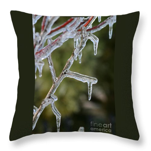 Ice Throw Pillow featuring the photograph Icy Branch-7506 by Gary Gingrich Galleries