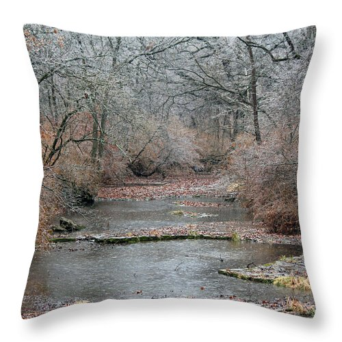Creek Throw Pillow featuring the photograph Icy Creek by Jamie Smith