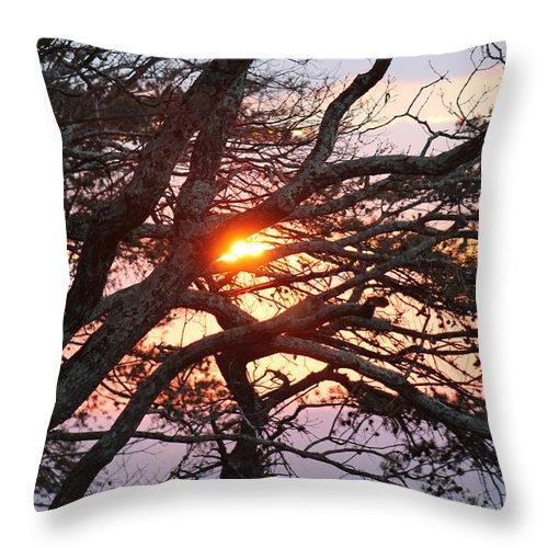 Sunset Throw Pillow featuring the photograph Illuminating Sunset by Robin Vargo