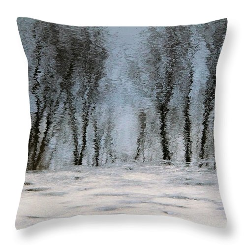 Ice Throw Pillow featuring the photograph Illusion by Doris Potter