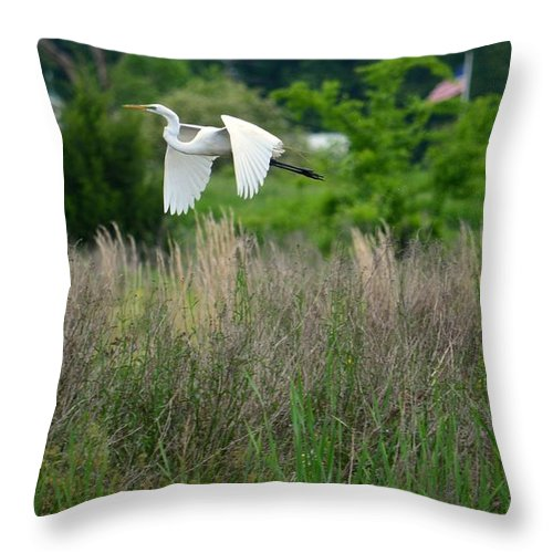I'm Free Throw Pillow featuring the photograph I'm Free by Maria Urso
