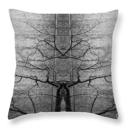 Imagination Throw Pillow featuring the photograph Imagination by Lilliana Mendez