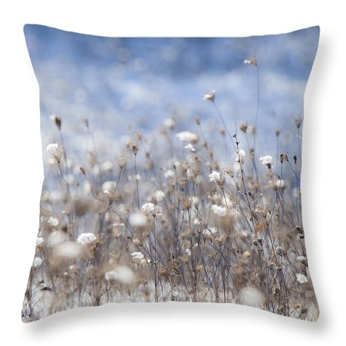 Impressionism Throw Pillow featuring the photograph Impressionist Mood by Christian Svastits