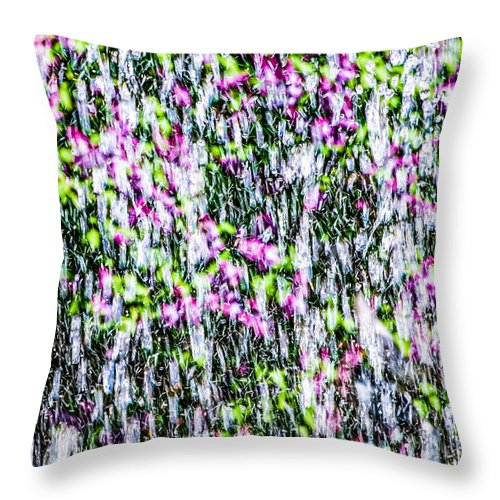Impressionism Throw Pillow featuring the photograph Impressions Of Spring 3 by Alexander Senin