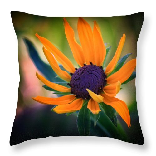 Bloom Throw Pillow featuring the photograph In Bloom by Aurelio Zucco