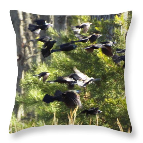 Blackbirds Throw Pillow featuring the photograph In Flight by Maria Manna