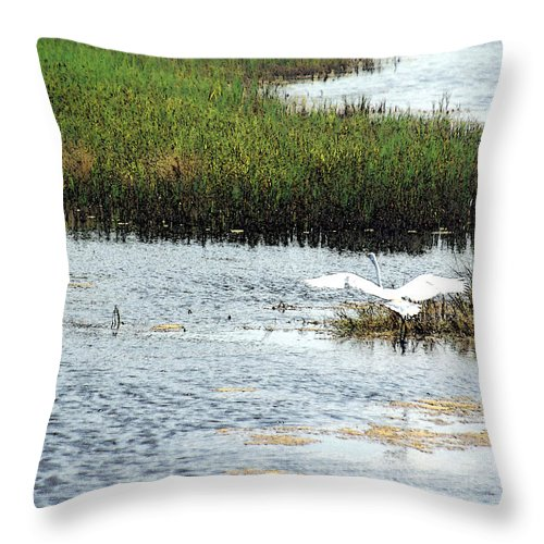 Egret Throw Pillow featuring the photograph In Flight by Suzanne Gaff