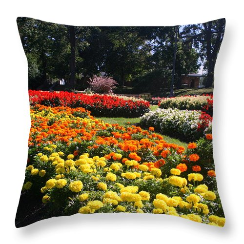 Nature Throw Pillow featuring the photograph In Full Bloom by Kay Novy