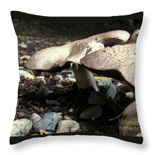 Mushroom Throw Pillow featuring the photograph In The Dark by Leone Lund