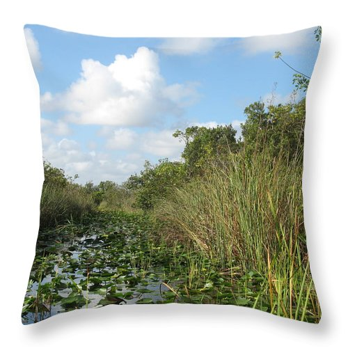 Everglades Throw Pillow featuring the photograph In The Everglades by Christiane Schulze Art And Photography