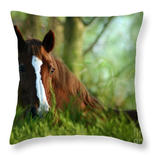 Horse Throw Pillow featuring the photograph In The Green by Angel Ciesniarska