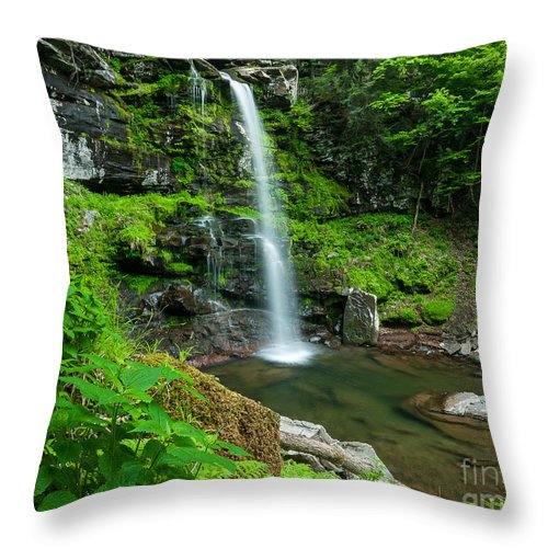 Brook Throw Pillow featuring the photograph In The Heart Of Platte Clove by JG Coleman