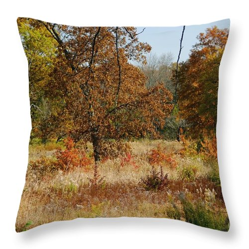 Autumn Throw Pillow featuring the photograph In The Meadow by Living Color Photography Lorraine Lynch