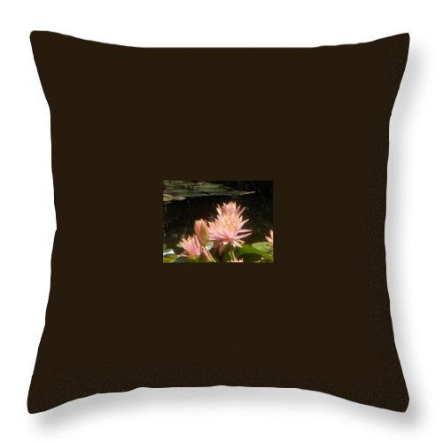 Throw Pillow featuring the photograph In The Pink by M Michele Herrick