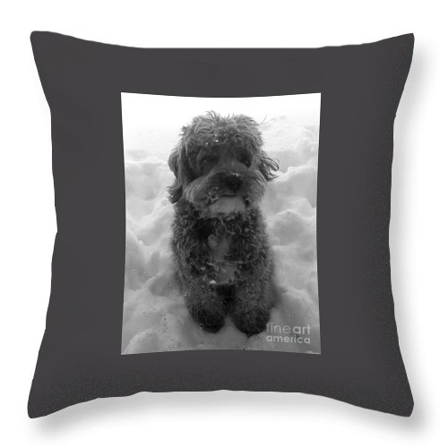 Snow Throw Pillow featuring the photograph In The Snow by Christy Gendalia