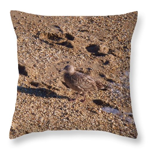Gravel Throw Pillow featuring the photograph In The Stone Surf Gravel Cape May Nj by Eric Schiabor