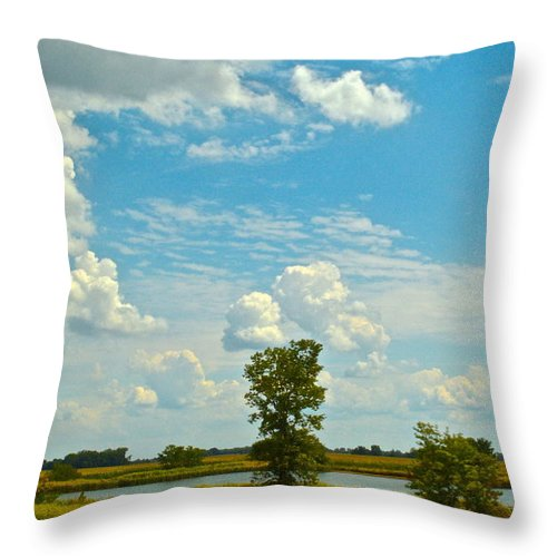 Storm Throw Pillow featuring the photograph Incoming by Frozen in Time Fine Art Photography