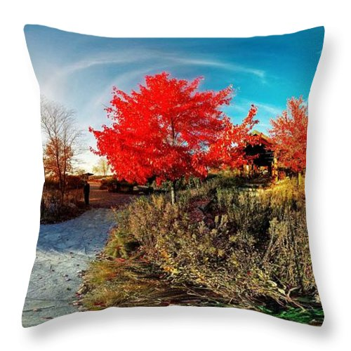 Illinois Landscape Throw Pillow featuring the photograph Independence Grove Forest Preserve I by Jaime Aguirre