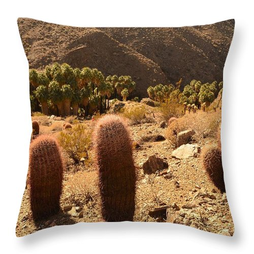 Indian Canyons Throw Pillow featuring the photograph Indian Canyon by Yinguo Huang