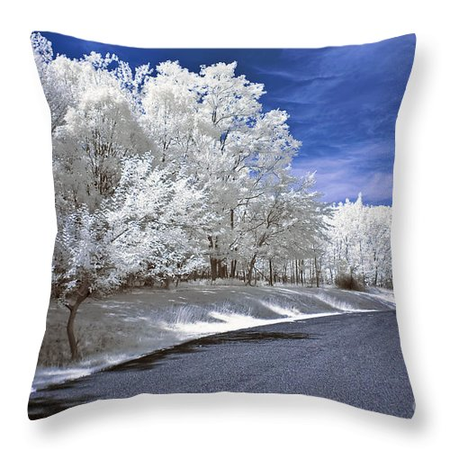 Landscape Throw Pillow featuring the photograph Infrared Road by Anthony Sacco