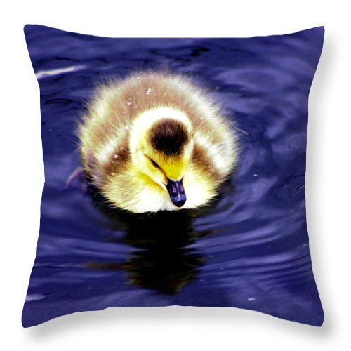 Duckling Throw Pillow featuring the photograph Innocence Of Spring by Nick Gustafson