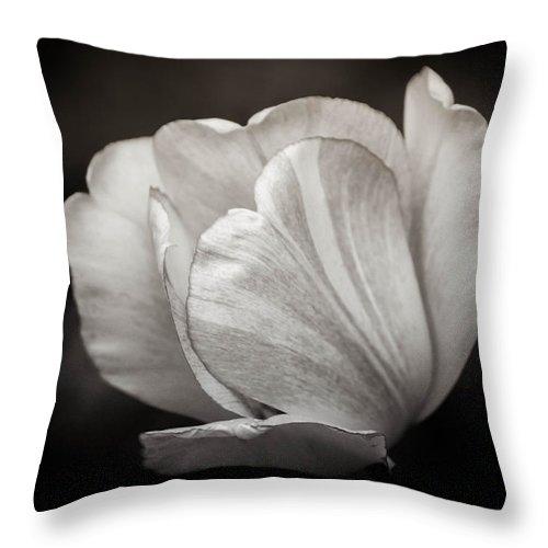 Black And White Throw Pillow featuring the photograph Innocence by Sara Frank