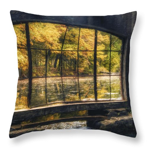Window Throw Pillow featuring the photograph Inside The Old Spring House by Scott Norris
