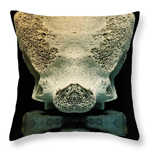 Throw Pillow featuring the photograph Installation 7 by WB Johnston