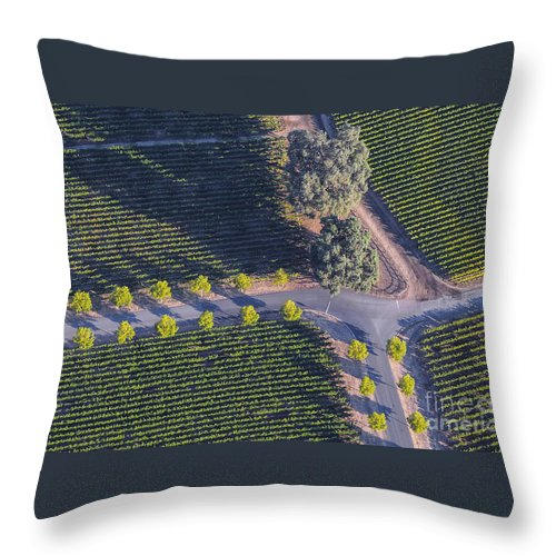 Napa Valley California Winery Wineries Grape Vine Vines Tree Trees Road Roads Street Streets Row Rows Vineyard Vineyards Landscape Landscapes Throw Pillow featuring the photograph Intersection by Bob Phillips